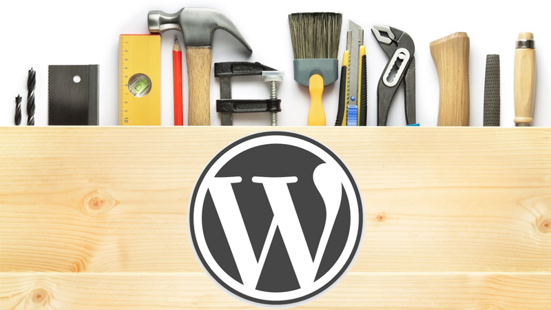 img-images-services-CMS Development-wordpress